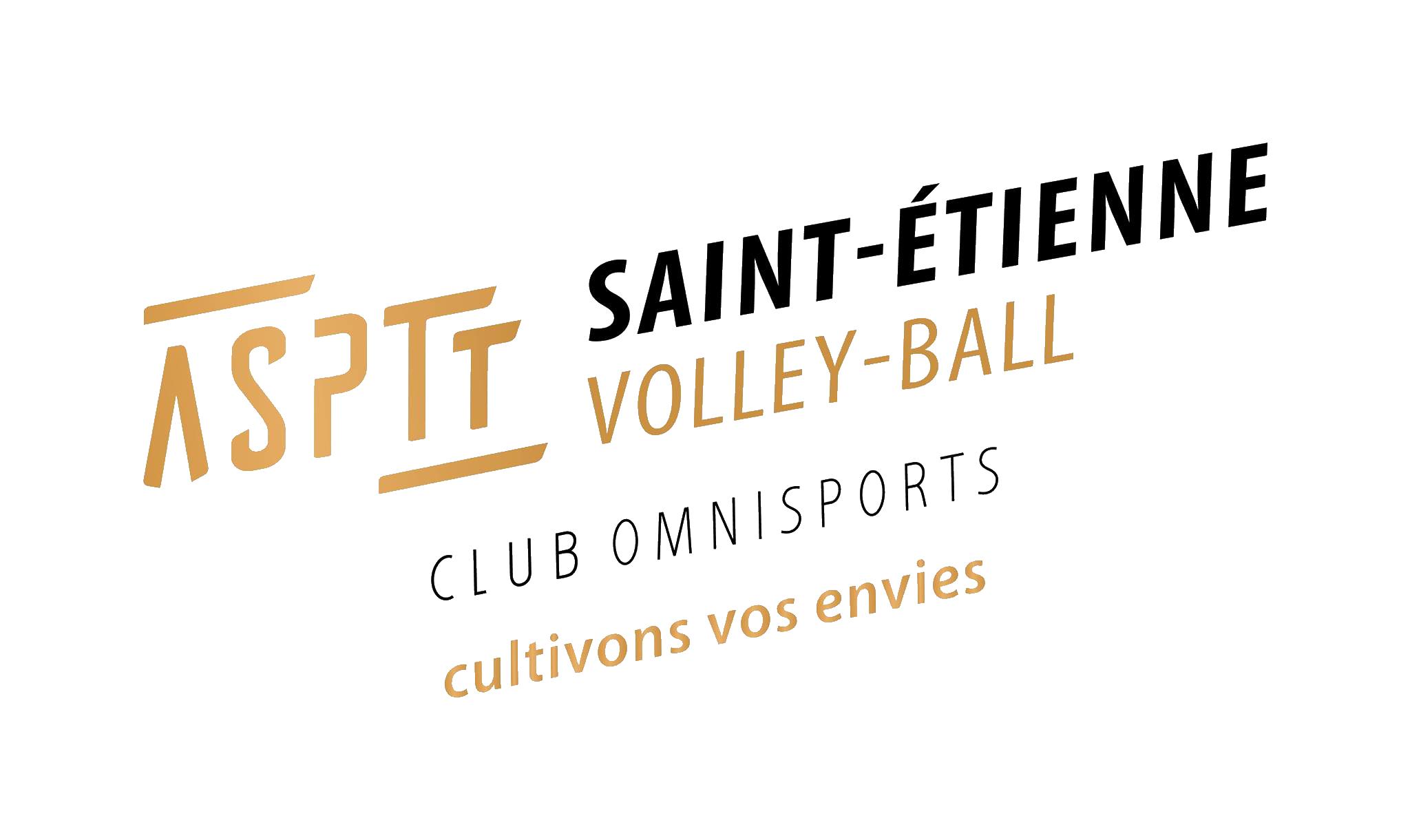 Le club de Volley-Ball Stéphanois convivial